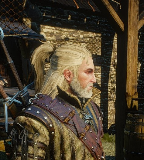 Mod Request Rivian Hairstyle The Witcher 3 Mod Talk The Nexus Forums