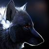 NightWolf2503
