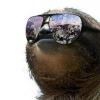 SlothEmpire