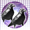 TwinCrows